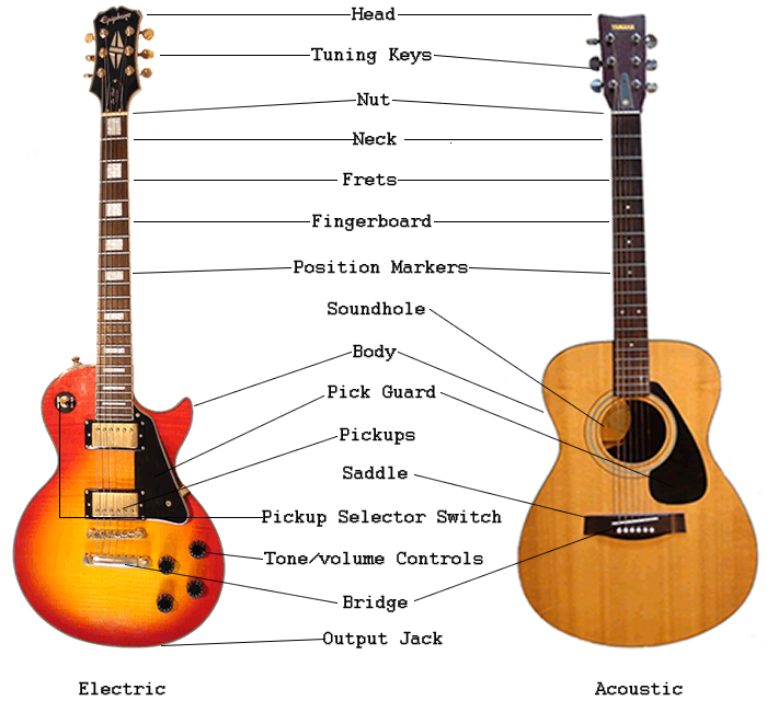 guitar for beginners lessons guitar anatomy free guitar for beginners lessons. Black Bedroom Furniture Sets. Home Design Ideas